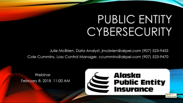Public Entity Cybersecurity Webinar